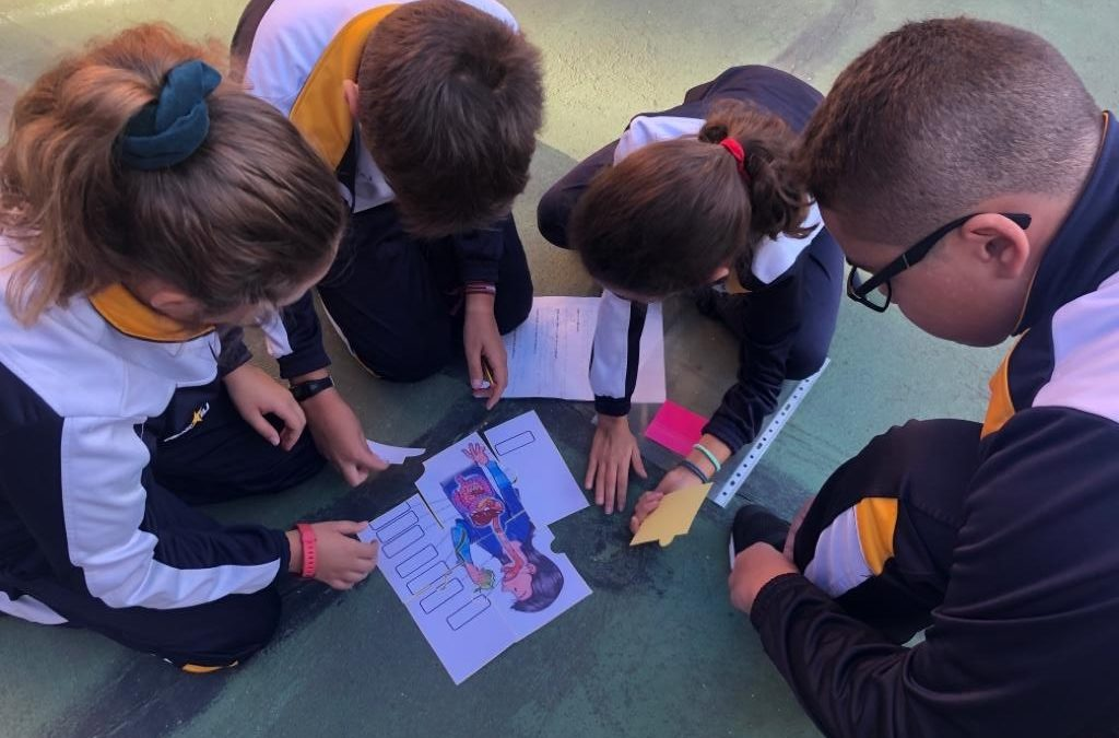 Primaria. Proyecto «Once upon a time…a cell»